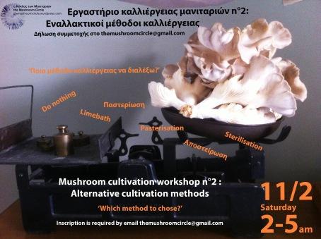 afisa-seminario-2